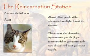 reincarnationsmall.jpg