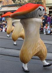 mushroom_feet.jpg