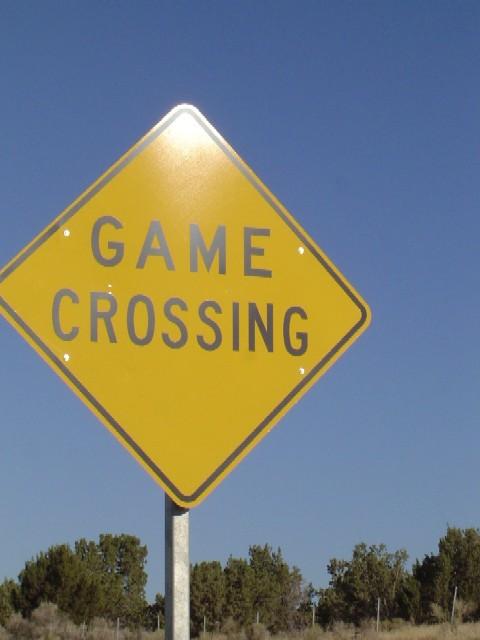 gamecrossing.jpg