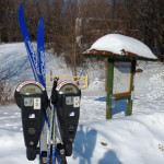 Skiing at Duluth's Bagley Nature Area: Nearly free and always fun