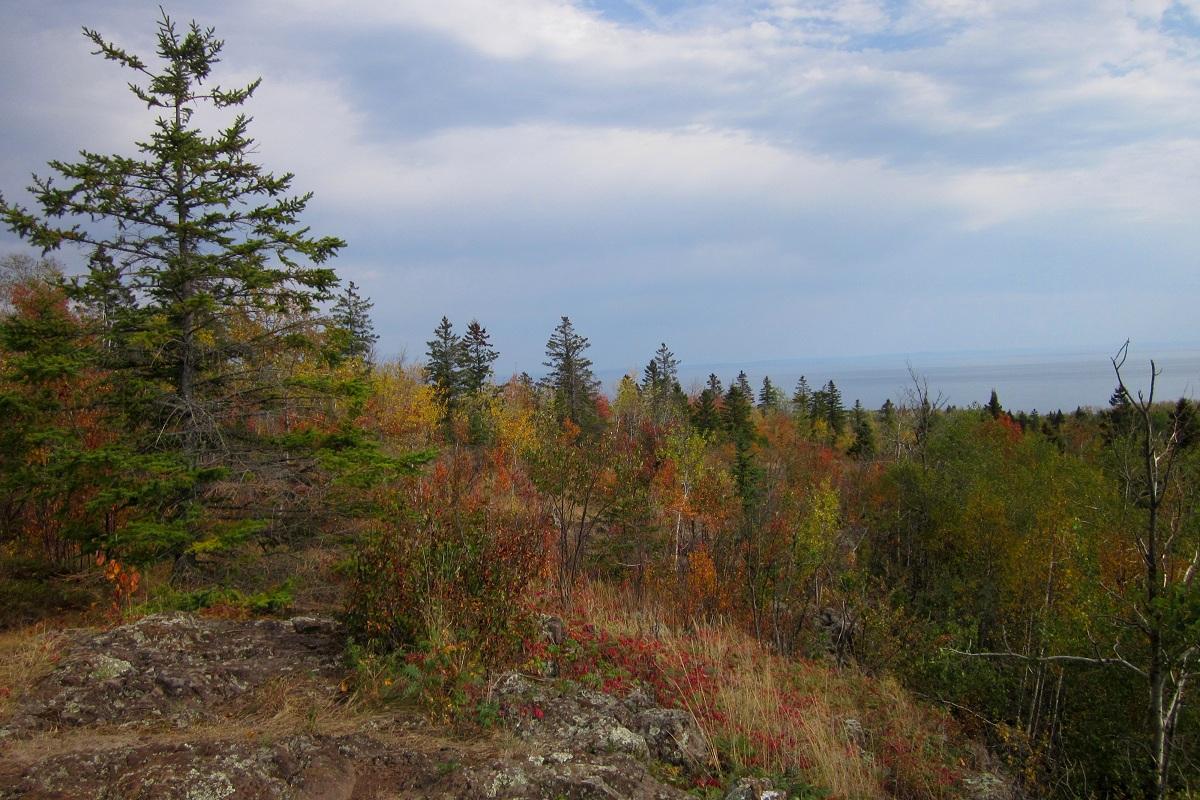 Minnesota-Fall-Colors-44