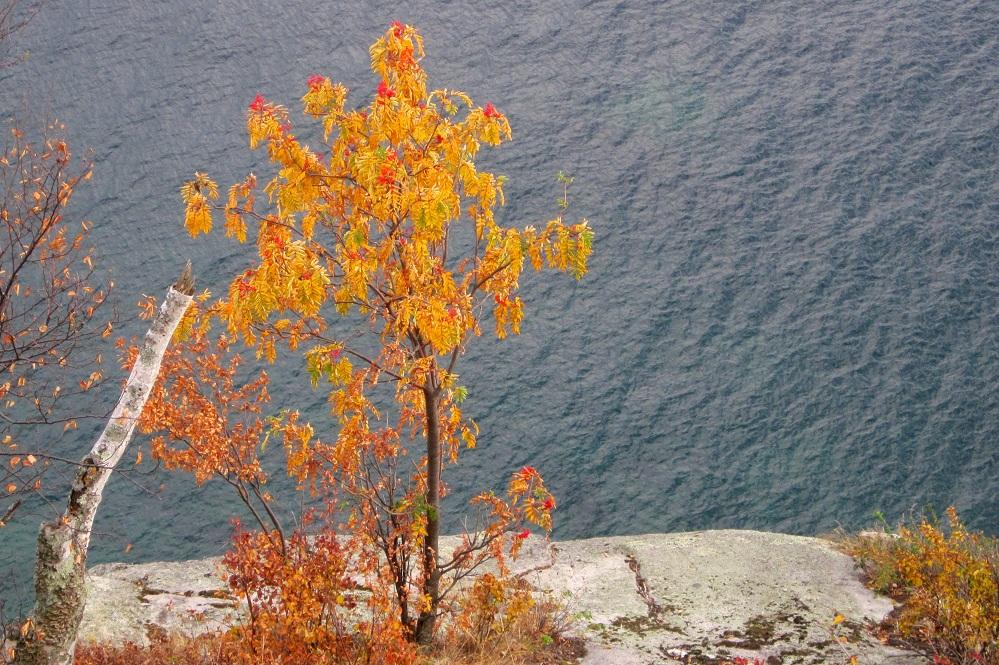 Minnesota-Fall-Colors-77