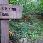 lost-creek-falls-trail-222