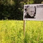 Superior Hiking Trail: Martin Road to Lismore Road