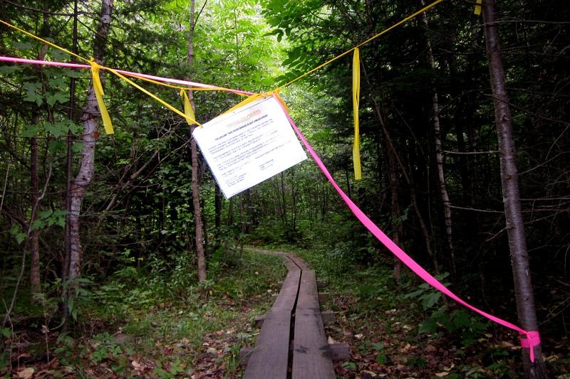 encampment-river-bridge-out