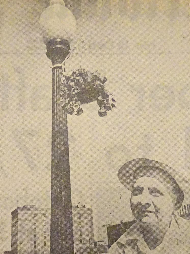 Civic Center's Lampposts Blossom