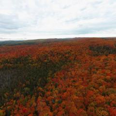Minnesota Fall Colors Aerial Drone Video