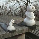 Selective Focus: Dirty Snow