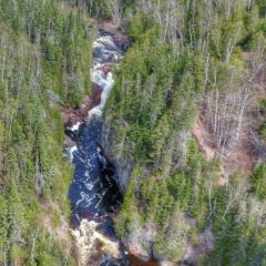 Devil's Kettle Falls Disappearing River