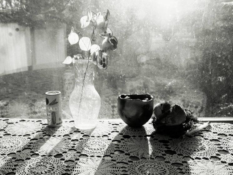 Tim White, untitled (still life, salt & pepper), Archival inkjet print,  2013