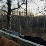 Minnesota Deer Hunting Opener 2016