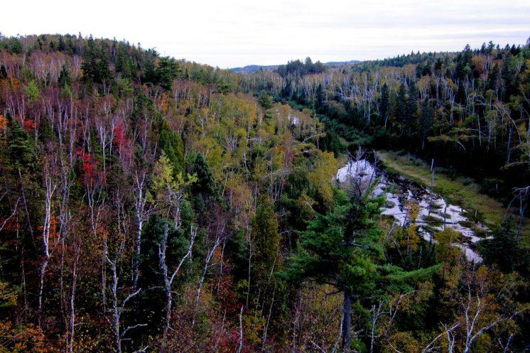 110923-ridge-over-beaver-pond