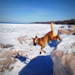 Wilma Wisconsin Point