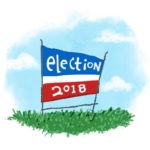 Duluth Primary Election Primer 2018