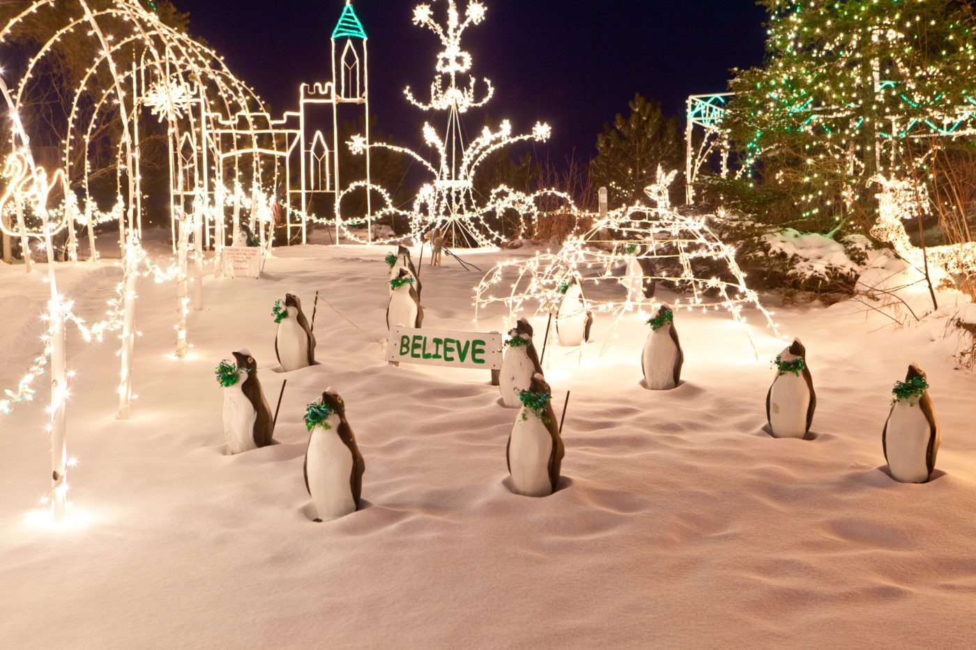 One More Year For Marcia Hales Holiday Light Display