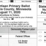 Duluth 2020 Primary Election Sample Ballot
