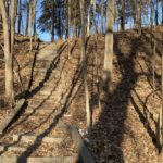 What's the deal with the stairway at Birchwood Park that leads down into a ravine?