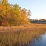 PDD Quiz: Duluth Parks II